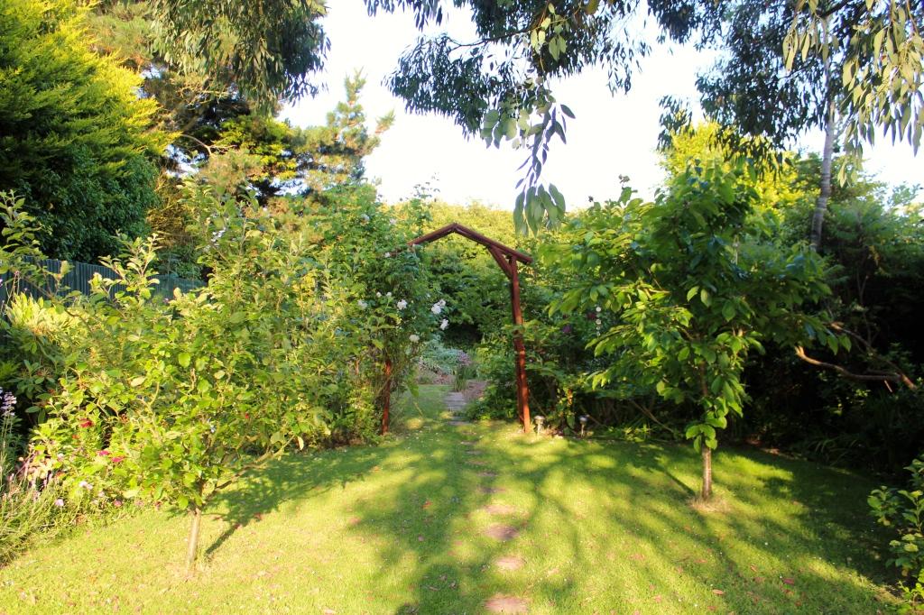 mum and dad's garden