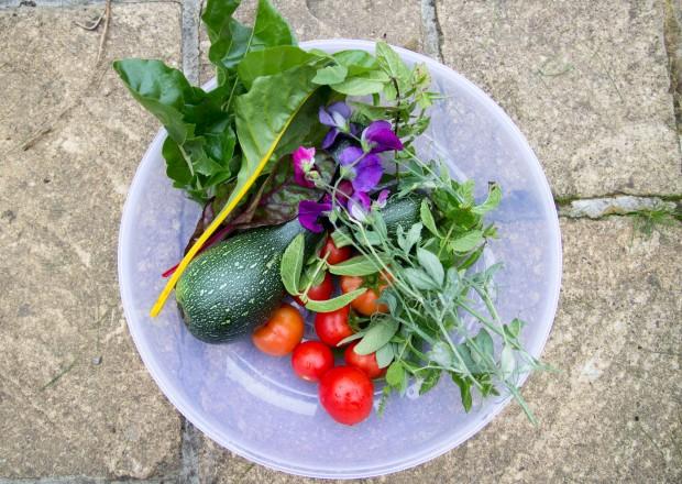 The Garden - Baking Betsy
