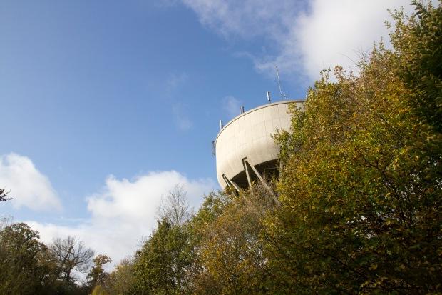Trent Park in the autumn