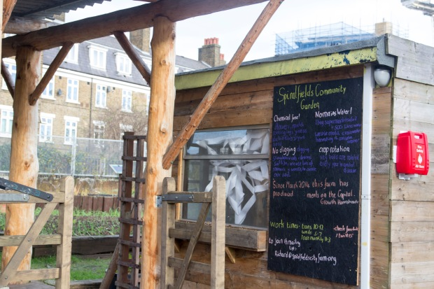 Spitalfields City Park Farm | Baking Betsy