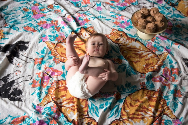 Arthur at 8 Months - Baking Betsy