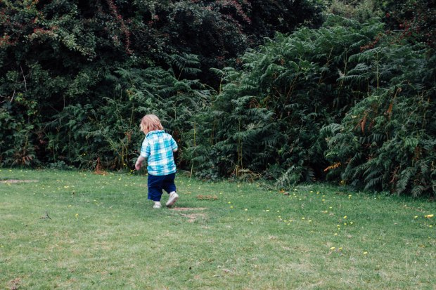 The New Forest, Christchurch and Milford on Sea | BakingBetsy