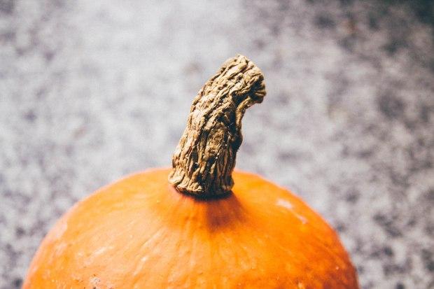 Pumpkin and carrot soup | BakingBetsy