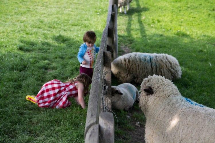 Travelling down to Mudchute city farm