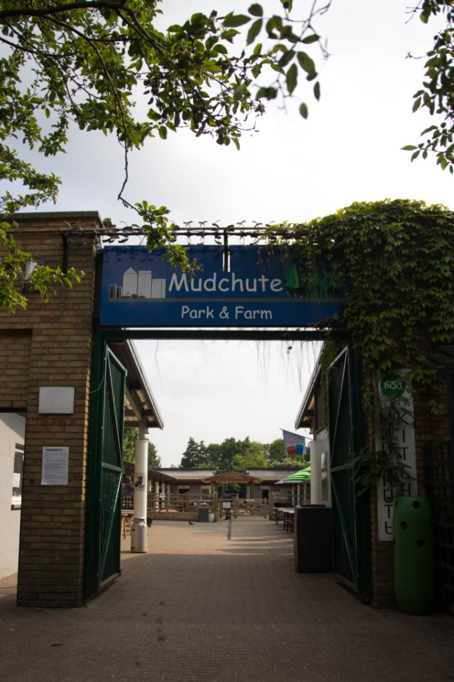 Travelling down to Mudchute city farm