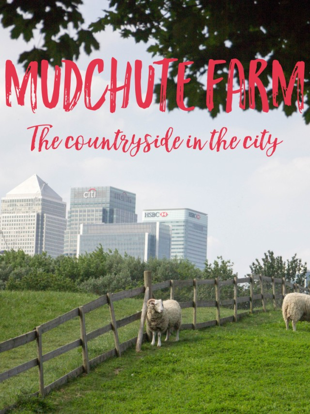 A trip to Mudchute farm, a lovely day out in London for all the family, we loved our day there!