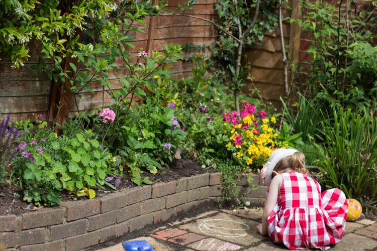 Around the garden, summer 16